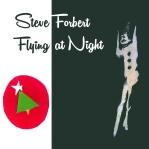 steve_forbert_flying_at_night